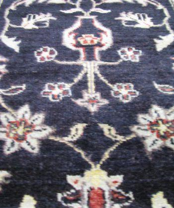 Chobi (8059)