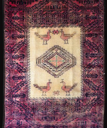 Turkish Area Rug #19-032